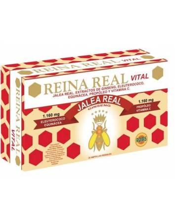 reina real vital 30 amp 10mg